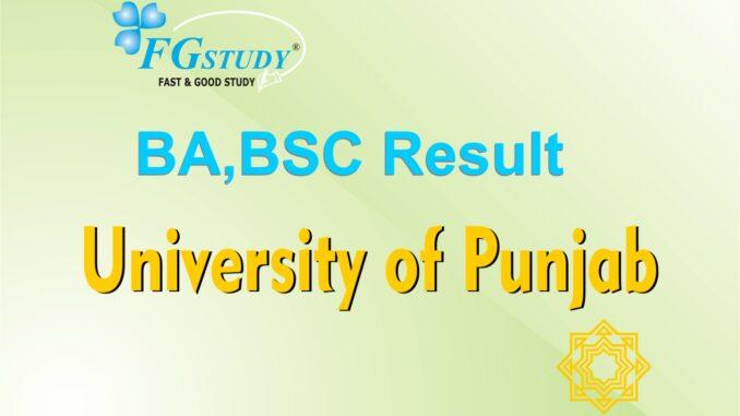 pu-ba-result-images